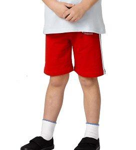 Rainbow cycle shorts