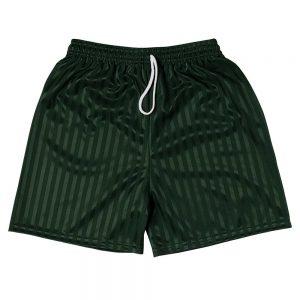 Shadow Stripe PE Shorts - Bottle